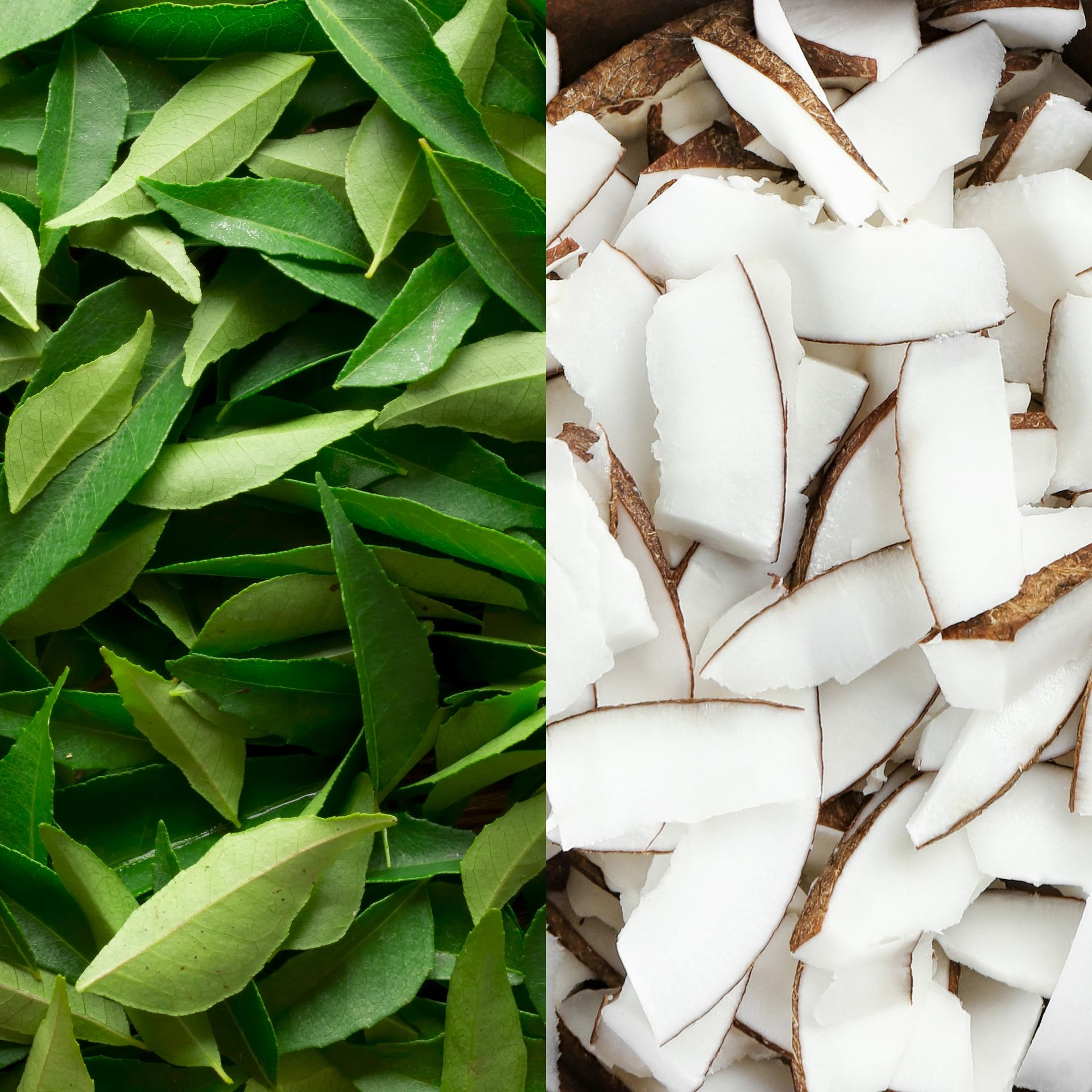 curry leaf and coconut