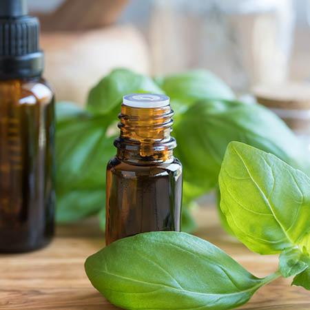 Basil Essential Oil - Sweet - USA *