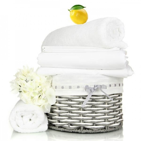 Citrus Linen Fragrance Oil