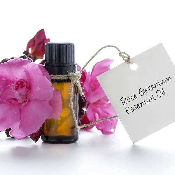 Rose Geranium Essential Oil *