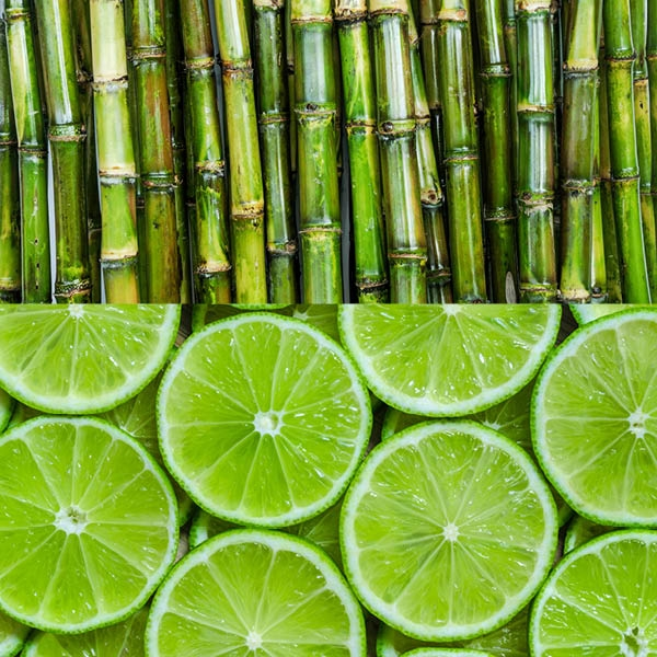 Lime & Sugarcane Fragrance Oil